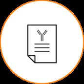 icn_casestudies
