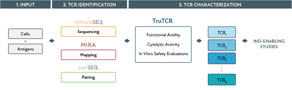 truTCR_diagram