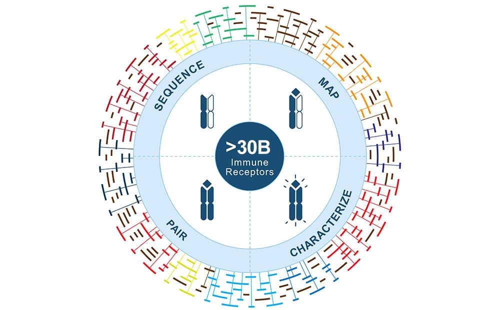 platform_1000x620_circular_111819