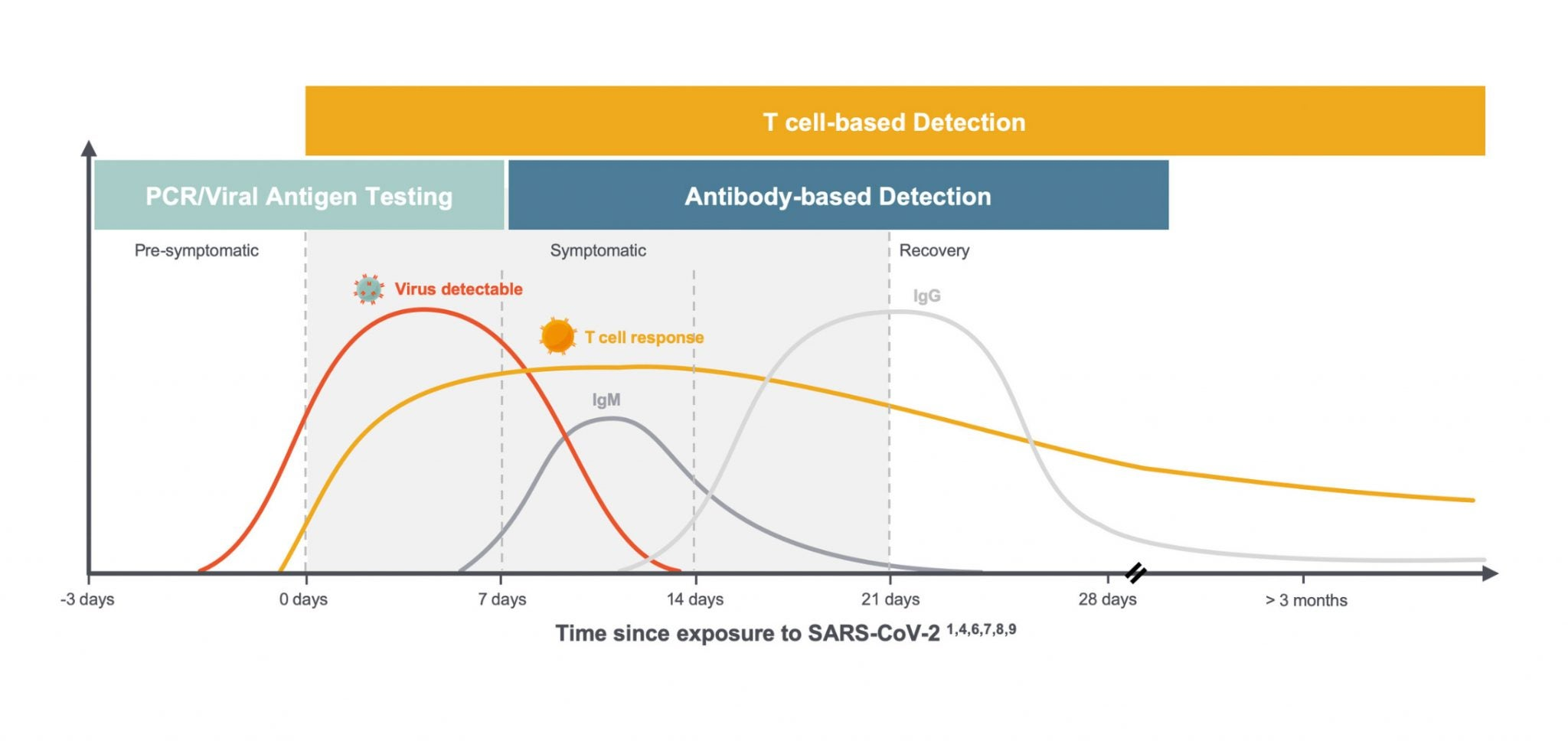 Graph showing antibody based detection versus T cell based detection